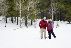 Active Retired Couple. Playing in the snow Royalty Free Stock Images