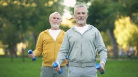 Active retired friends lifting dumbbells, fitness training park, healthy aging