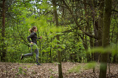 Active runner exercising in nature. Image of active female runner exercising in nature Royalty Free Stock Photography