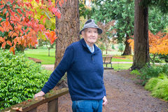 Active Senior in Arboretum and Garden in Autumn. Elderly man in arboretum and garden with fall colors of Korean dogwood and Japanese maple in background royalty free stock photography