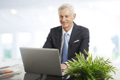 Active senior businessman Royalty Free Stock Image