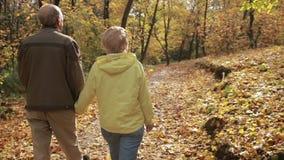 Active senior couple enjoying freetime in park stock video