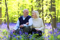 Active senior couple hiking in the forest Royalty Free Stock Images