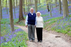 Active senior couple hiking in the forest Stock Photography