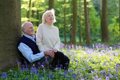 Active senior couple hiking in the forest Royalty Free Stock Image