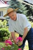 Active senior in the garden. An active senior in the garden with hut and garden shears Royalty Free Stock Photo