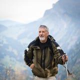 Active senior hiking in high mountains Stock Photos