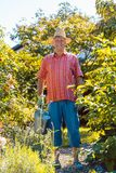 Active senior man watering plants in the garden in a tranquil day stock images