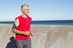 Active senior man jogging on the pier Royalty Free Stock Photos