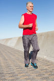 Active senior man jogging on the pier. On a sunny day Stock Image