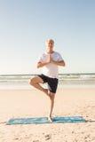 Active senior man practicing tree pose at beach. On sunny day Stock Photos