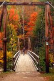 Walking in the fall foliage stock photos