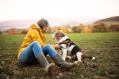 Senior woman with dog on a walk in an autumn nature. Royalty Free Stock Photos