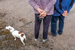 Active senior woman with dog on a walk in a nture road back view hand crossed. Active senior woman with dog on a walk in a nture road back view royalty free stock images