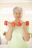 Active senior woman doing exercises. Active senior woman doing dumbbell exercises at home, smiling stock photography