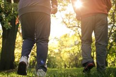 Active seniors exercising in forest. Only legs. Close up. Day in nature Royalty Free Stock Image