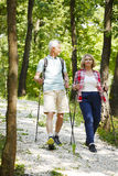 Active seniors. Full length portrait of active senior couple enjoying a nordic walk in the forest while old men and elderly women talking with each other Stock Photography