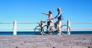 Active seniors going on a bike ride by the sea. On a sunny day stock footage