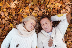 Active seniors in nature Royalty Free Stock Image