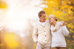 Active seniors in nature. Active seniors on a walk in autumn forest Stock Image