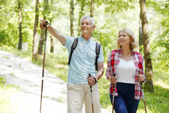 Active seniors. Portrait of senior couple enjoying a nordic walk. Active elderly women and men walking on the forest and smiling Stock Photos