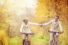 Active seniors riding bike Royalty Free Stock Photos