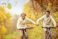 Active seniors riding bike. In autumn nature. They relax outdoor Stock Image