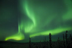 Active splitting Aurora Borealis arc Royalty Free Stock Photography