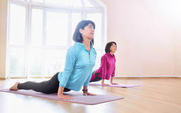 Active sportive mature women doing exercise in fitness studio Stock Photo