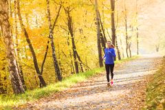 Active and sporty woman runner in autumn nature stock image