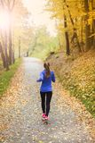 Active and sporty woman runner in autumn nature Stock Photography