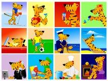 Active tiger collection Stock Photos