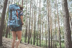 Active tourist girl is walking in forest royalty free stock photography