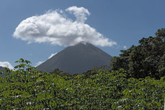 Active volcano Arenal in Costa Rica Stock Image