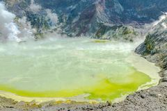 Active Volcano at White Island New Zealand. Volcanic Sulfur Crater Lake. Oceania stock photo