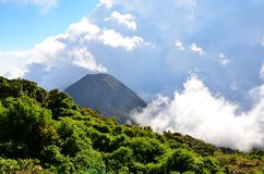 Active volcano Yzalco in clouds Stock Images