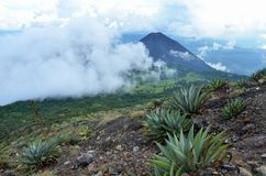 Active volcano Yzalco and clouds Stock Photography