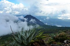 Active volcano Yzalco in the clouds. View of active volcano Yzalco, in El Salvador Royalty Free Stock Images