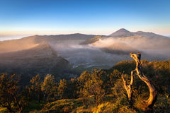 Active volcanoes Bromo and Semeru seen in the morning light, Java, Indonesia Royalty Free Stock Photo
