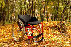 Active wheelchair in the park Stock Photo