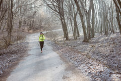 Active woman in forest Stock Photography