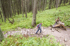 Active women on mountain path - Poland, Tatra. Stock Images