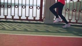 Side view of female legs doing morning jog