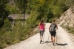 Active young couple on a hike in forest on a hot wummer day.  Royalty Free Stock Images