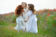 Active young girls playing on the green grass. The active young girls playing on the green grass royalty free stock photo