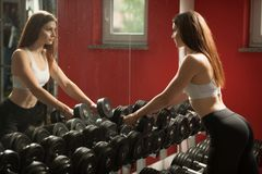 Active young woman work out her arms in fitness club gym.  Royalty Free Stock Images