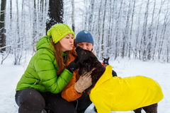 Activefamily walk the dog in the winter forest. Stock Image