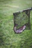 Actividad al aire libre de las truchas de la pesca Foto de archivo