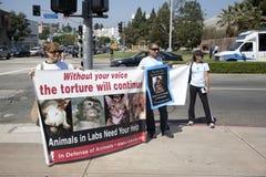 Activistas del derecho de los animales en el UCLA Foto de archivo libre de regalías