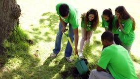 Activistes environnementaux plantant un arbre en parc banque de vidéos